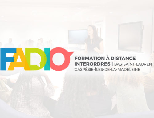 FADIO Presented to an International Delegation at the Cégep de La Pocatière